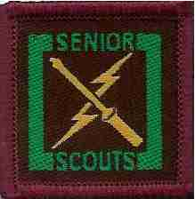 The Senior Scout Elecrician Badge